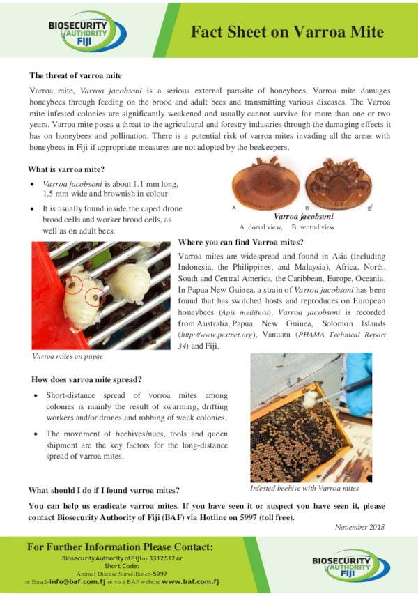 Biosecurity Authority of Fiji (BAF) Fact Sheet on Varroa Mite - November 2018