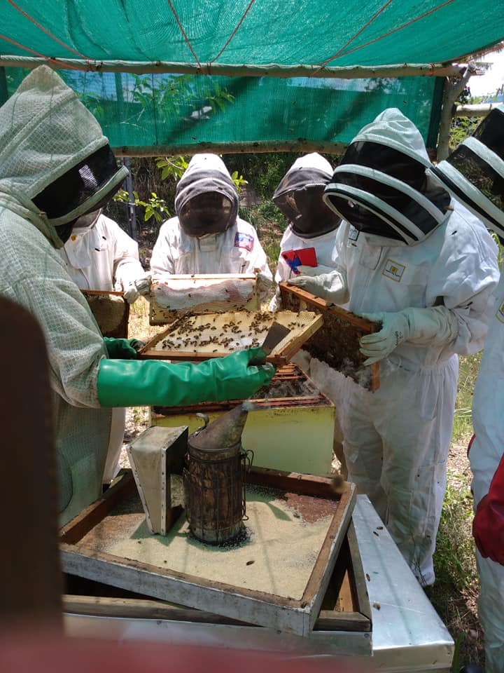 Basic Beekeeping Workshop - 4th March 2021 (Theory & Practical)