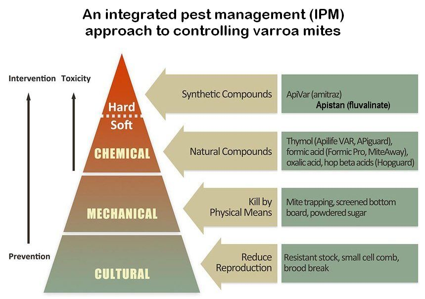 integrated pest management (IPM) approach