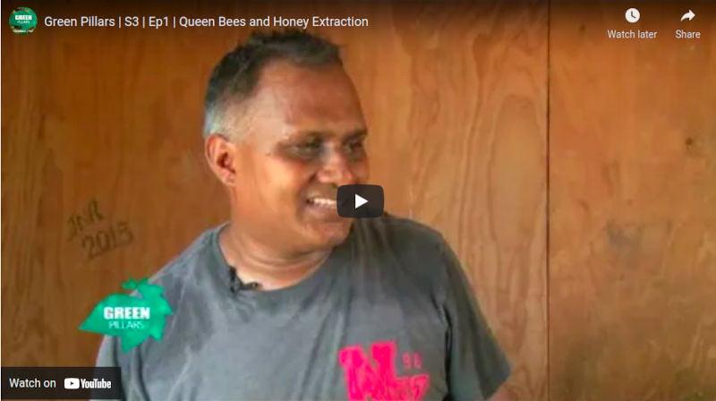 Beekeeping on Fiji TV Green Pillars S3 Ep1 Queen Bees and Honey Extraction